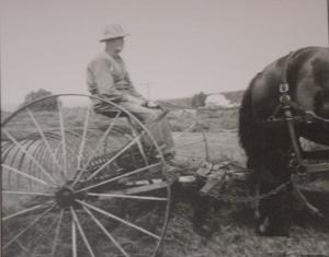 During the farming season horses were used to haul equipment to prepare the land.