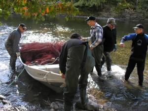 Mettre les filets dans l'eau est beaucoup plus facile quand il y a plusieurs personnes qui aident.