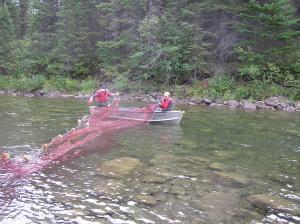 Le positionnement des filets pour capturer les gros saumons demande beaucoup d'attention. Ceci pet être très provocant quand le