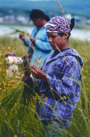The children are continuously taught how to gather sweet grass along with many other teachings.